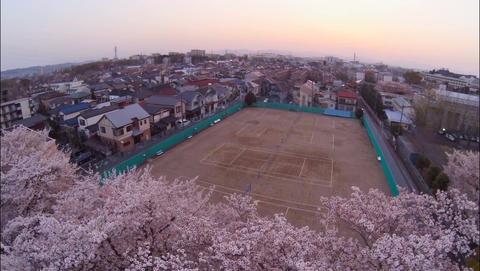 From dress up of cherry blossoms to townscape Dolly Filmmaterial