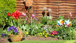English garden view Footage