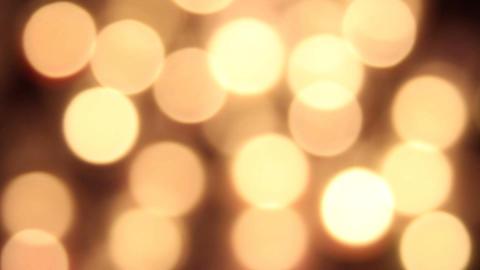 Light 02 Live Action