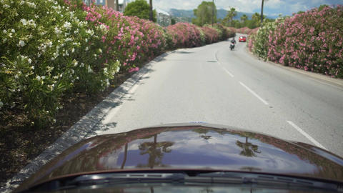 Automobile driving along beautiful street surrounded by bushes in resort town Footage