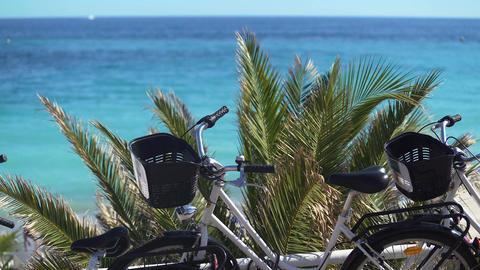 Bicycles near beach, green transport for active rest and ecology protection Footage