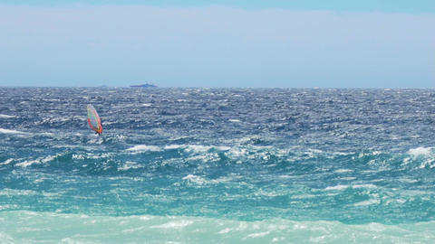 Strong and brave man windsurfing in light blue sea, high speed, extreme sport Footage