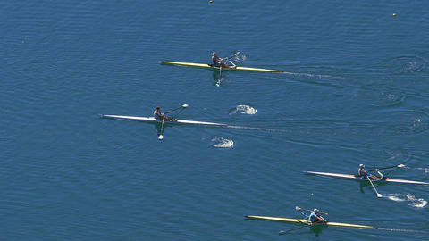 Athlete rowers participating in speed scull race, water sports competition Footage