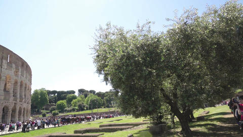 Many people viewing Colosseum, famous tourist attraction, sunny Italy, panorama Live Action