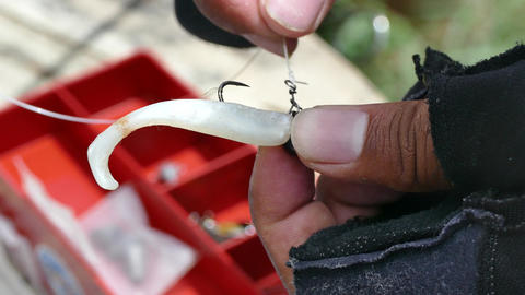 Angler tying a fishing hook to rubber worm lure ビデオ