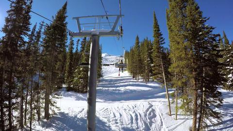 Alpine Skiing, Live Action