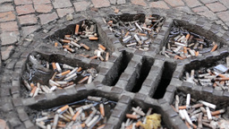 Cigarette butts on the street at the top of the sewer Live Action