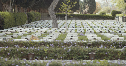graves and tombstones at a military cemetery in Israel