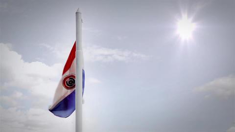 Paraguayan Flag Waving Footage