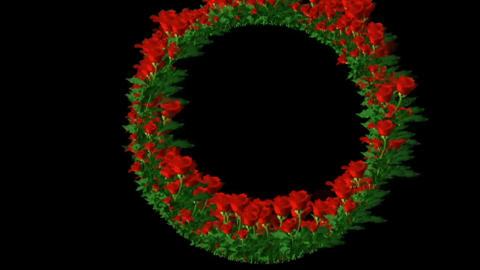GREEN CIRCLE WITH RED ROSES Footage