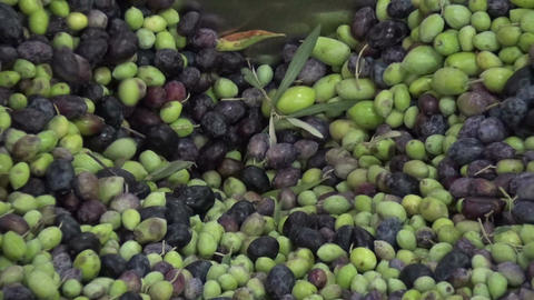 Olives in the Oil Press 1 Filmmaterial