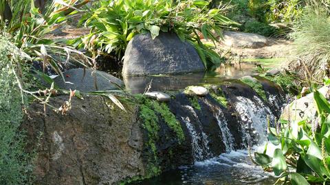 Video of waterfall in 4K Footage