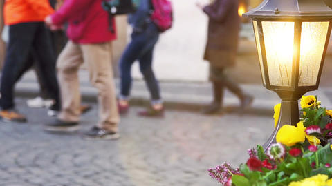 Glowing lantern and flower bed against tourists Footage
