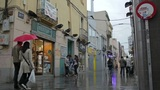 Busy Street After The Rain. Impressionism Mood. stock footage