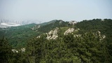 Panoramic of Mountains & hill,wind shaking pine Footage