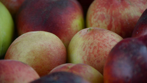 Fresh delicious peaches & nectarines Footage