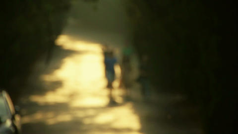 Nominal figure.Visitors walk under the shade of trees,walking on road Footage