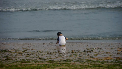 Child play digging sand at the beach.tide,tidal Stock Video Footage