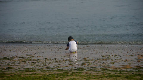 Child play digging sand at the beach.tide,tidal Footage