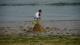 Child play digging sand at the beach.Dune,tide,tidal Footage