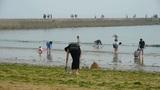 Beautiful fashionable girl woman wearing black dress at beach.Visitors walk on d Footage