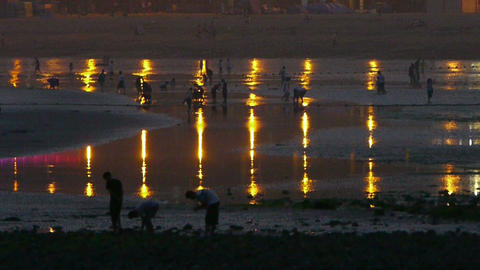 Tourist play at sand beach.Neon reflection in... Stock Video Footage
