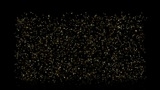 fly particles take light tail & insects in darkness Animation