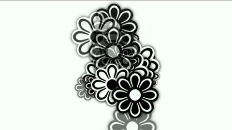 wild daisy flower,spring scence,wedding background Animation