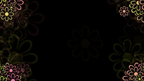 wild daisy flower frame,spring scence,wedding background Animation