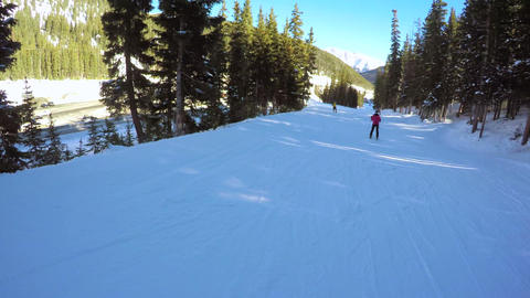 Alpine Skiing Live Action