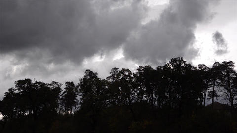 Gray clouds passing over a dark pine forest Footage