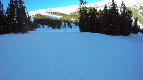 Alpine Skiing Footage