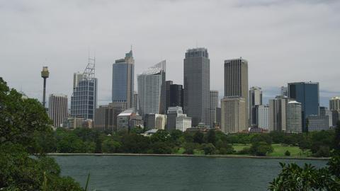Spring time in Sydney in 4K Footage