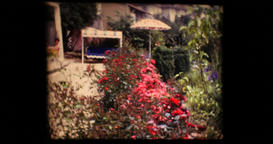 1970 - Women sitting at the table on a terrace in the garden full of flowers and Footage