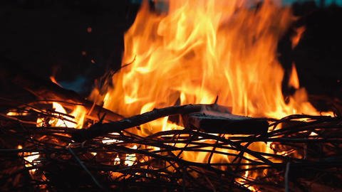 Campfire with burning wood and twigs at twilight. Man arranges the fire with a s Footage
