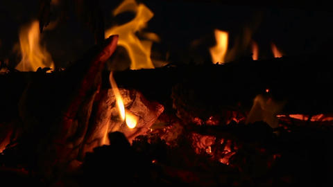 Closeup of campfire with burning log wood and twigs at night - Slow motion ビデオ