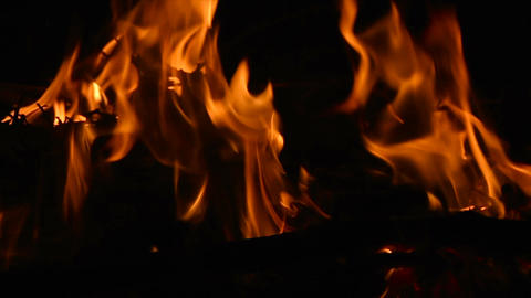 Closeup of campfire with burning log wood and twigs at night - Slow motion Footage