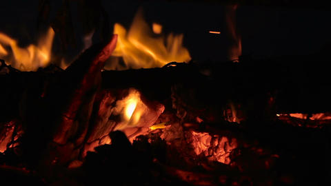 Closeup of campfire with burning log wood and twigs at night Footage