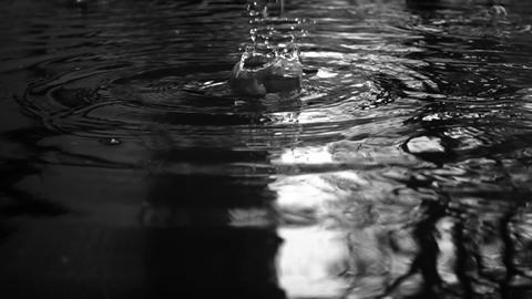 Spring Rain Drops Splash Background Video Live Action