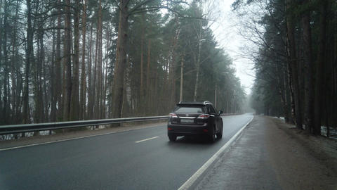 Car On The Road In The Forest Filmmaterial