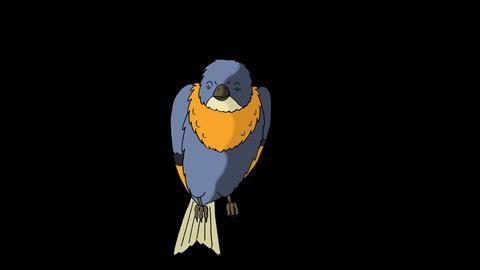 Blue Bird Sitting and Singing Animation