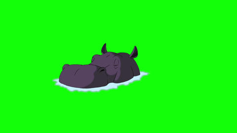 Big Violet Hippopotamus Emerges from the Water Animation