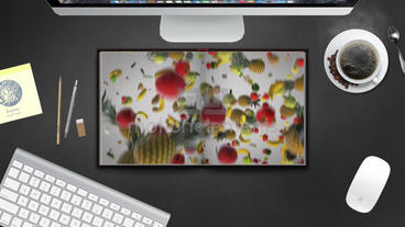 My video book Apple-Motion-Projekt