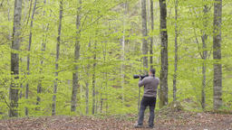 Wildlife photographer in the forest Footage