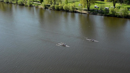 rowers in boats on the river Footage