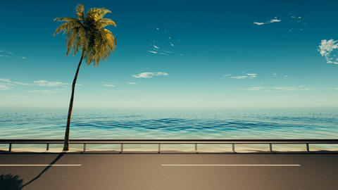Asphalt road near the sea with a palm tree Animation