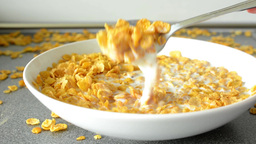 corn flakes with milk Footage