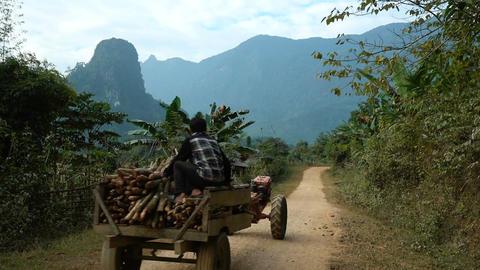 People transporting wood in Ban Na village Acción en vivo