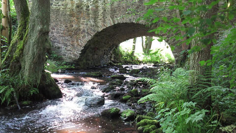 Stream flowing under the old stone bridge Footage