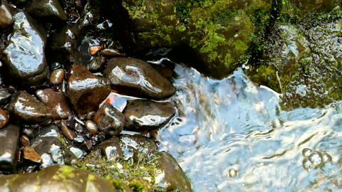The colorful basalt stones in blurred water of mountain stream Footage
